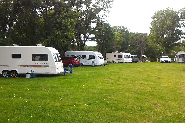 View of some of the camp site pitches